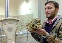 Cristiano Savini mostra a trufa gigante  encontrada pelo cão Rocco